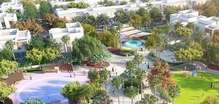 Orchid Plot at  Al Zahia